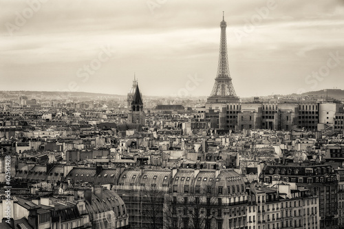 Foto op Plexiglas Artistiek mon. View of Paris and of the Eiffel Tower from Above