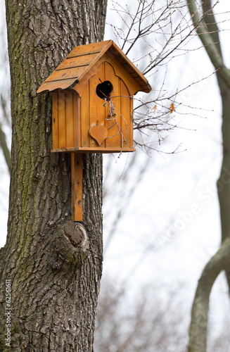 Beautiful wooden birdhouse