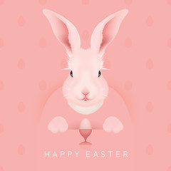 Easter Bunny - vector illustration - egg pattern background