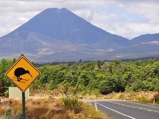 volcano in new zealand