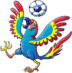 Cool macaw playing with a soccer ball on its head
