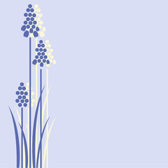 Three grape hyacinths design