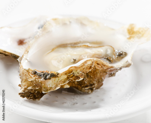 Fresh oyster on a white plate