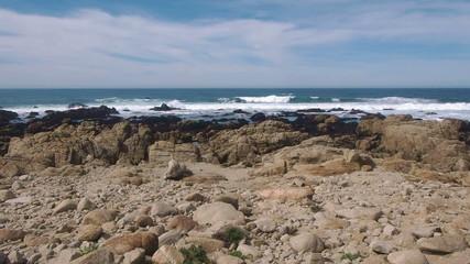 Rocky coast off northern California