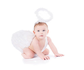 Cute baby with angel wings and nimbus isolated on white