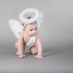 Infant with angel wings and nimbus on neutral background