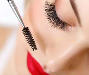 Woman eye with beautiful makeup and long eyelashes. Mascara
