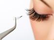 Woman eye with beautiful makeup and long eyelashes. Mascara  - 62576467