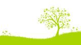 Fototapety Wiese mit Baum