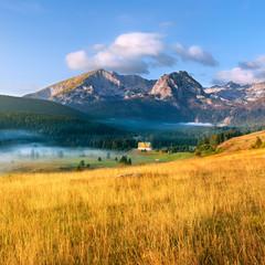 Mountain landscape. Durmitor National Park - Montenegro