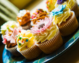 Horizontal colour image of cupcakes on a plate