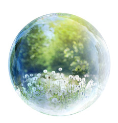 nature bubble