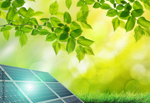 Solar panel in the green