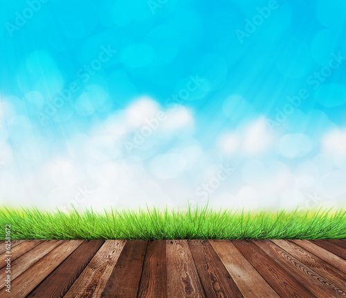 summer garden background