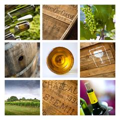 Vin, œnologie et viticulture