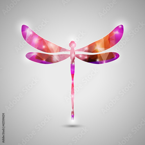 Trendy Colorful Dragonfly Vector Illustration