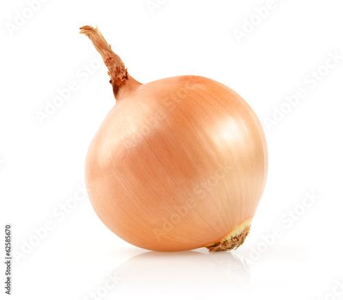 Onion Isolated on White Background - 62585670