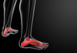 3d render x-ray of foot - close-up