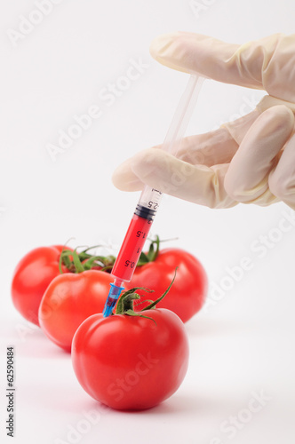 Making a red color injection into a tomato