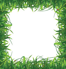Frame of grass. Vector illustration