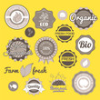 Collection green vector labels, badges and icons