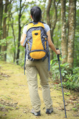 woman hiker hiking in forest