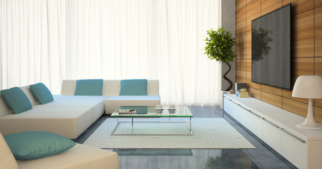 Modern interior with white sofas and tv