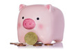 Pink piggy bank and Euro currency coins