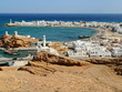 Sur (Ṣūr,Sour) Ash Sharqiyah Oman Sultanat Moyen Orient - 62601476