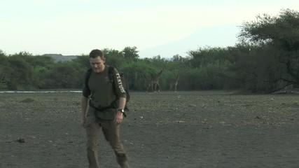 marcher au milieu des girafes