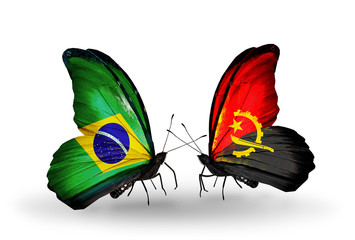 Two butterflies with flags Brazil and Angola