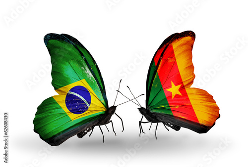 Two butterflies with flags Brazil and Cameroon