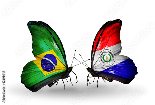 Two butterflies with flags Brazil and Paraguay