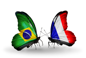 Two butterflies with flags Brazil and France