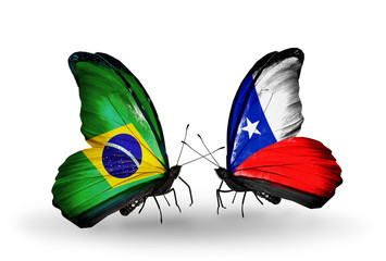Two butterflies with flags Brazil and Chile