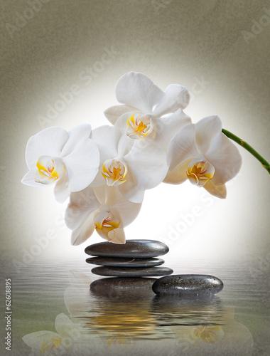 Orchideenblüte über Wasser mit Schmucksteinen - 62608895