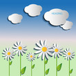 Daisies, background colors with floating clouds