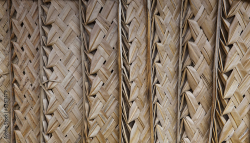 palm thatch background