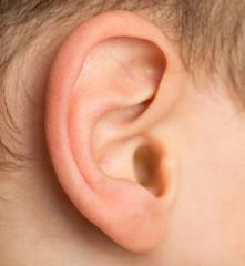 boy's ear