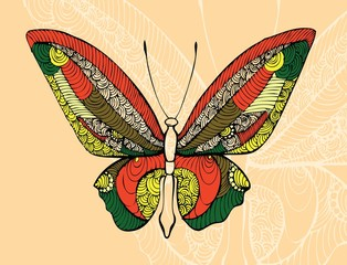 abstract  butterfly