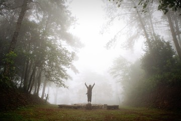 happy in the mist