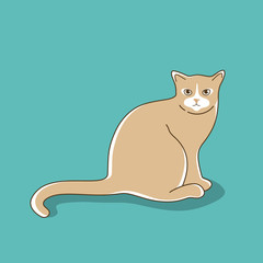 Iillustration of sitting cat.
