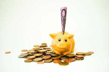 Euromünzen, Sparschwein