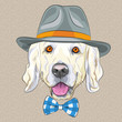 vector funny cartoon hipster dog Golden Retriever