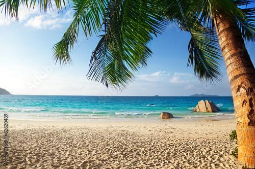 Anse Lazio beach, Praslin island, Seychelles - 62620489