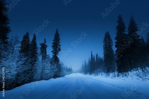 Keuken foto achterwand Bossen night road in winter forest