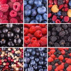collection of 9 berry backgrounds