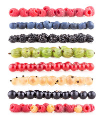 collection of berry images