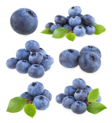 collection of 9 blueberry images