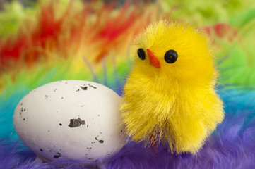 Easter chicken with egg